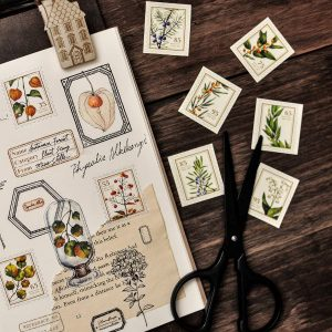 Miao Stelle – Seasonplants Washistickers