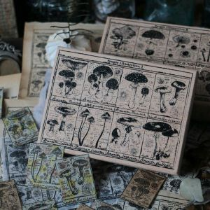 LCN Design – Fungus Notecard Stamps I & II – Preorder