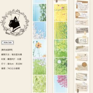 Miao Stelle – Spring Color