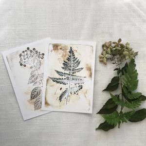 Symbotanica Series III A6 –  Postcards By Caroline Vieira