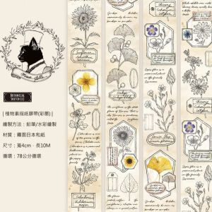 Miao Stelle -Botanical Scetch Color